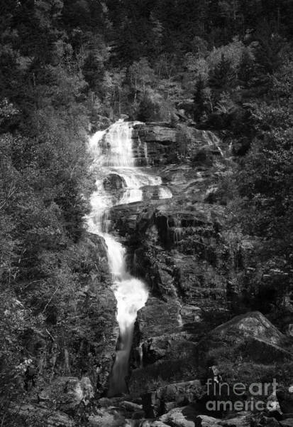 Photograph - Adirondack Waterfall by David Waldrop