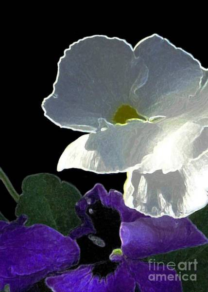Digital Art - African Violet by Dale   Ford
