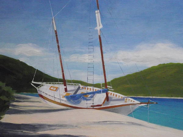 Us Virgin Islands Painting - After The Storm by Robert Rohrich
