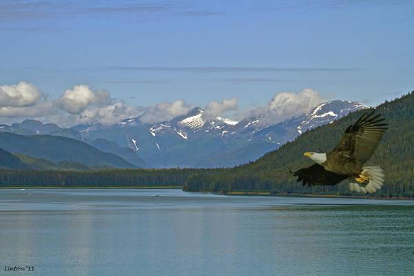 Wall Art - Photograph - Alaska Scene by Larry Linton