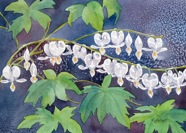 Bleeding Wall Art - Painting - Albino Bleeders by Marsha Elliott