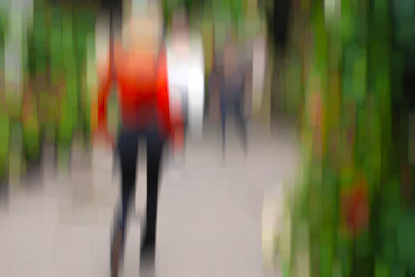 Photograph - Alive In The City 2 -walking The Dog by Robin Webster