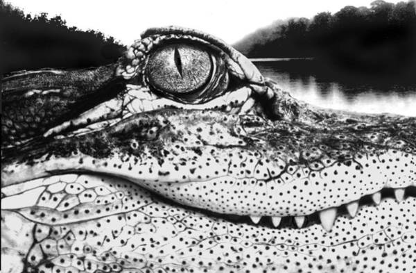 Wall Art - Digital Art - Alligator Smile by Fred Leavitt