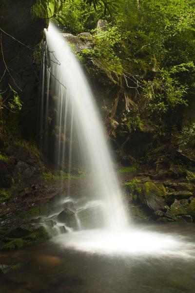 Grottos Photograph - Alongside Grotto Falls by Andrew Soundarajan