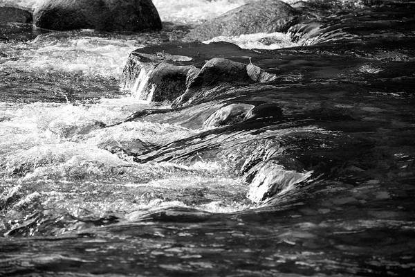 Alouette Wall Art - Photograph - Alouette River by Ivan SABO