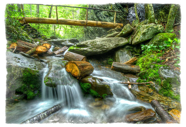 Photograph - Alum Cave Bluff Trail by Debra and Dave Vanderlaan