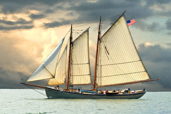 Schooner Photograph - American Eagle by Fred LeBlanc