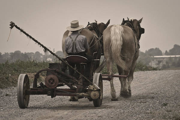 Photograph - Amish Life by Wes and Dotty Weber
