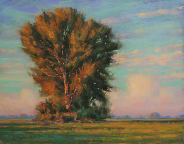 Sacramento Painting - An August Memory by Joe Mancuso