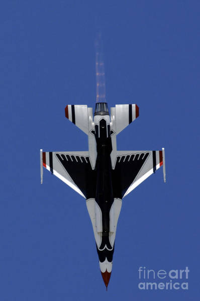 Photograph - An F-16 Falcon Dives Straight by Stocktrek Images