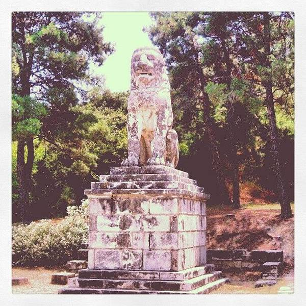 Wall Art - Photograph - #android #greece #lion #amphipolis by Dominique Sgambettera