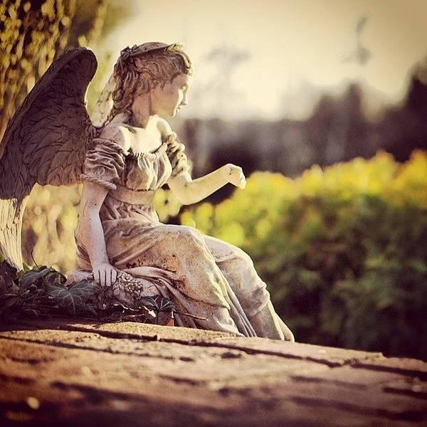 Wall Art - Photograph - Angel In The Yard by John Swisher