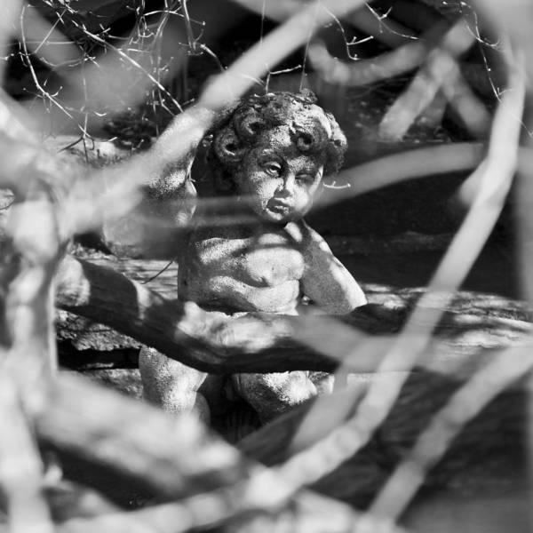 Old Glory Photograph - Angel by Joana Kruse