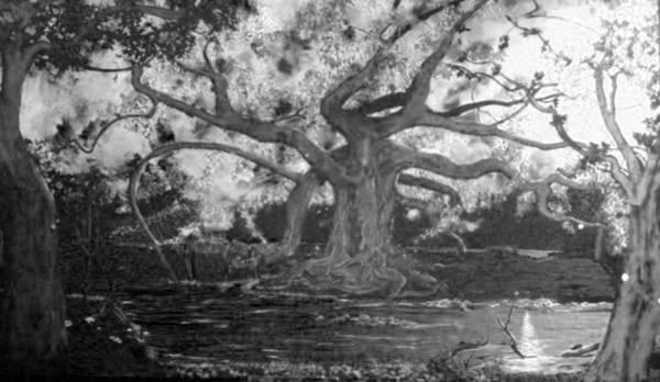 Angel Oak Painting - Angel Oak by Stefan Duncan