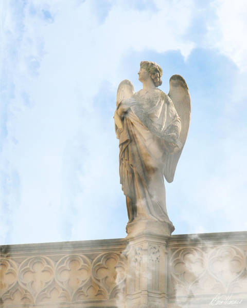 Photograph - Angel Of The Sky by Diana Haronis