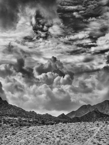 Rancho Mirage Photograph - Anger Management by Dominic Piperata