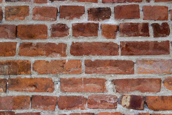 Crumble Photograph - Another Brick In The Wall by Heidi Smith