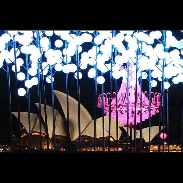 Vivid Wall Art - Photograph - Another Capture From Vivid Festival by Sydney Australia
