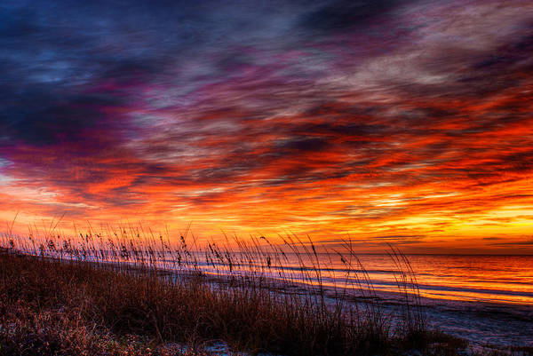 Photograph - Another Perfect Morning by Dennis Dame