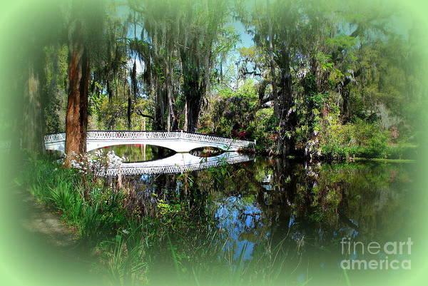 Photograph - Another White Bridge In Magnolia Gardens Charleston Sc II by Susanne Van Hulst