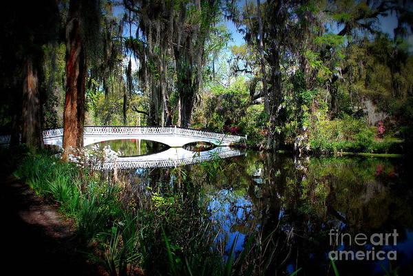 Photograph - Another White Bridge In Magnolia Gardens Charleston Sc by Susanne Van Hulst