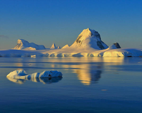 Photograph - Antarctic Dusk by Tony Beck
