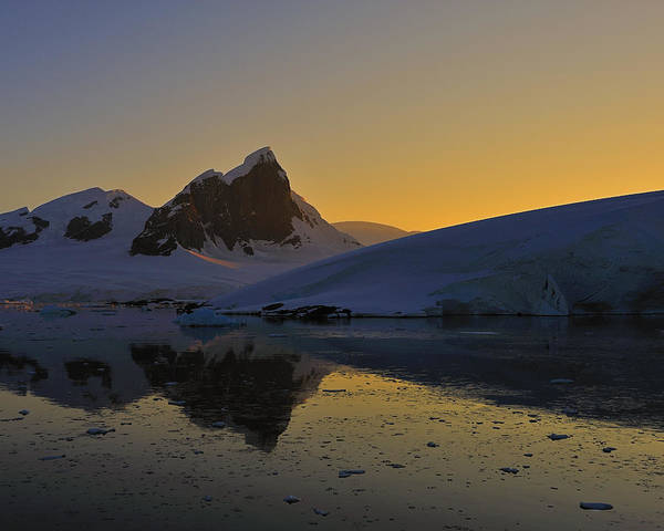 Photograph - Antarctic Sunrise by Tony Beck