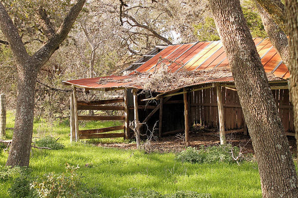 Photograph - Antique Barn by Sarah Broadmeadow-Thomas
