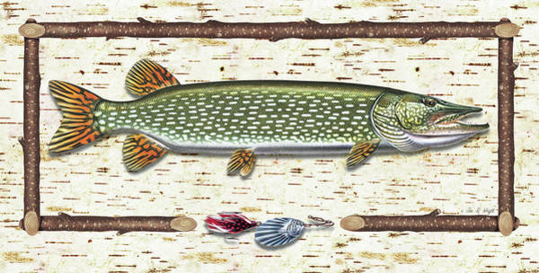 Tree Bark Wall Art - Painting - Antique Birch Pike And Lure by JQ Licensing