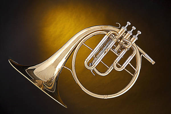 Photograph - Antique French Horn Isolated On Gold by M K Miller