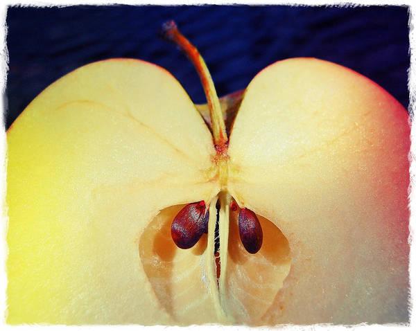 Photograph - Apple by Skip Hunt