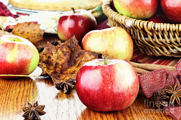 Basket Stars Photograph - Apples by Stephanie Frey