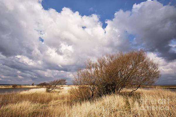 Wall Art - Photograph - April Weather by Wedigo Ferchland