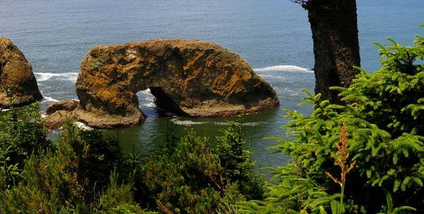 Oregon Coast Mixed Media - Arch Rock by Tatiacha  Bhodsvatan