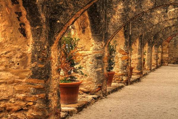 Photograph - Arched Walkway by Sarah Broadmeadow-Thomas