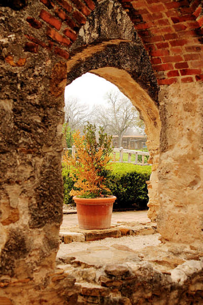 Photograph - Archway Into A Secret Garden by Sarah Broadmeadow-Thomas