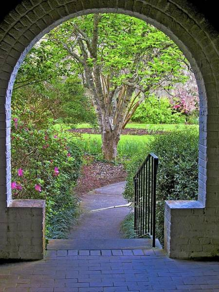 Photograph - Archway by Ralph Jones