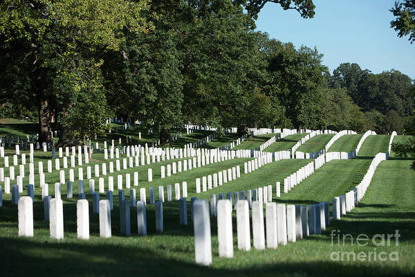 Famous Cemeteries Photograph - Arlington National Cemetery, Arlington by Terry Moore