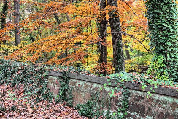 Photograph - Arlington's Edge by JC Findley