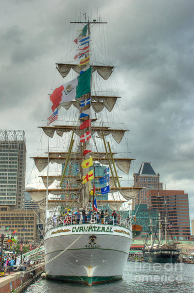 Photograph - Arm Cuauhtemoc by Mark Dodd