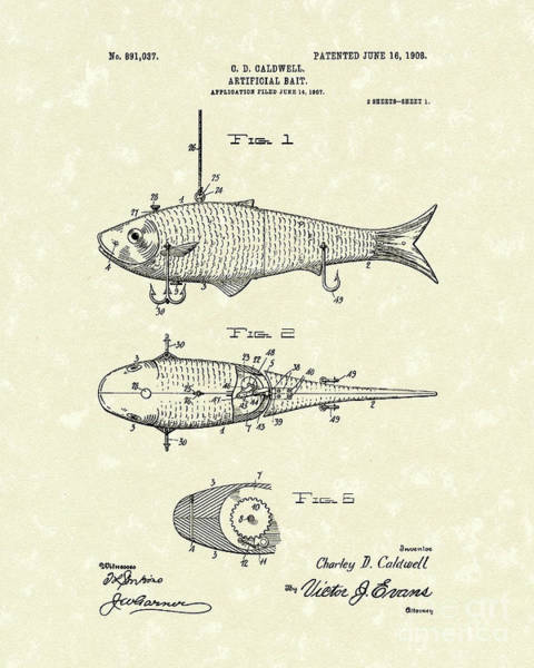 Drawing - Artificial Bait 1908 Patent Art by Prior Art Design