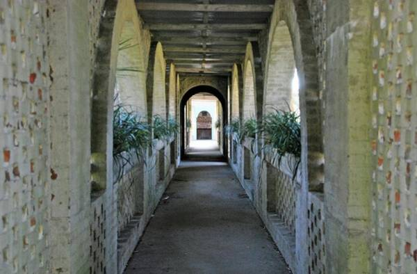 Photograph - Atalaya Covered Walkway by Bill Hosford