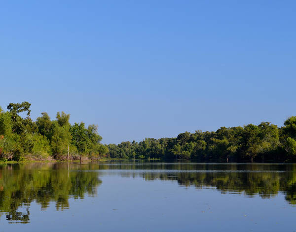 Photograph - Atchafalaya Basin 2 by Maggy Marsh