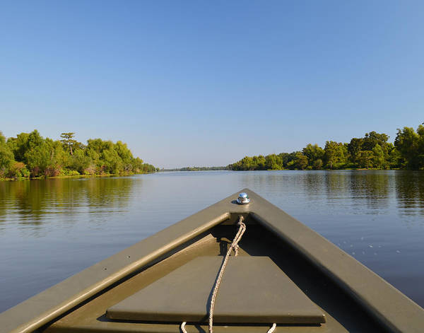 Photograph - Atchafalaya Basin 23 by Maggy Marsh