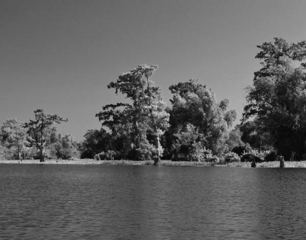 Photograph - Atchafalaya Basin 28 by Maggy Marsh
