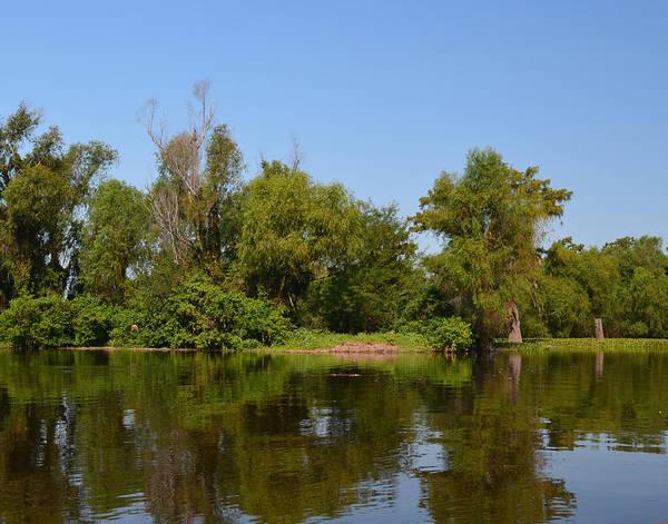 Photograph - Atchafalaya Basin 37 by Maggy Marsh