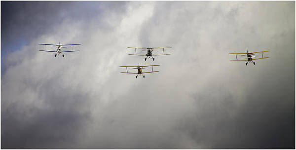 Moth Photograph - Attack Attack Attack by Nigel Jones