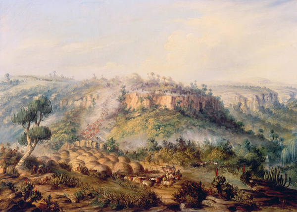 Settlers Painting - Attack On Stocks Kraall In The Fish River Bush by Thomas Baines