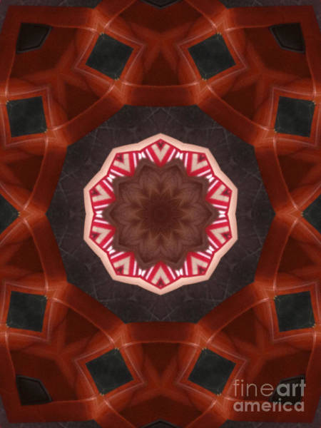 Photograph - Auburn And Cherry Kaleidoscope by Donna L Munro