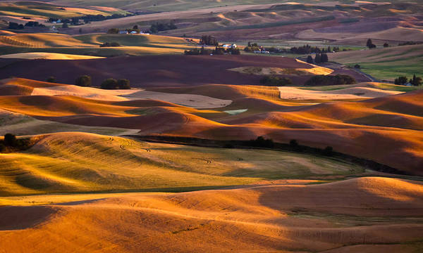 Wall Art - Photograph - August Sunset At Steptoe Butte by Alvin Kroon